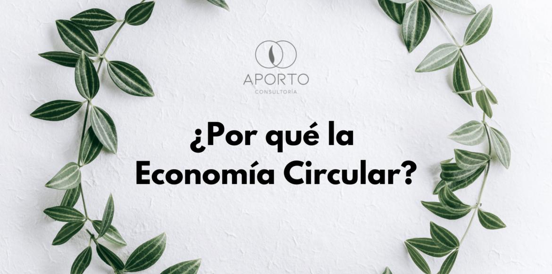por que la economia circular